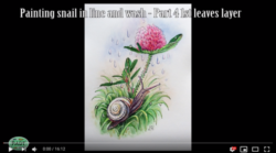 Watercolour painting of snail